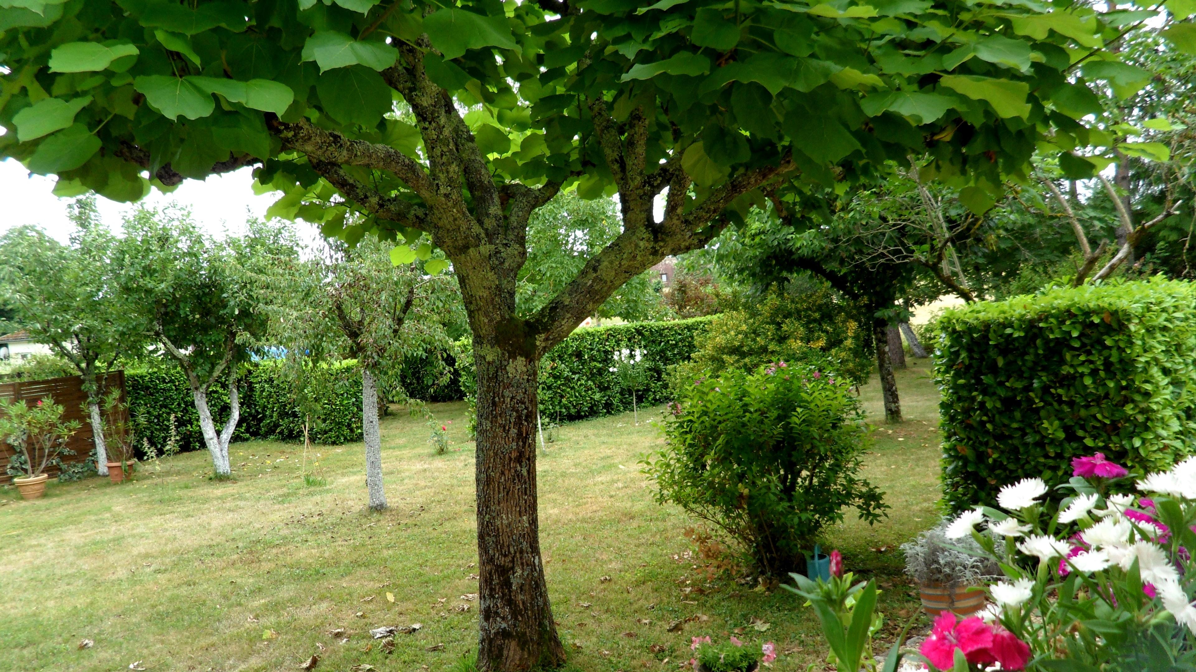 jardinsud.jpg